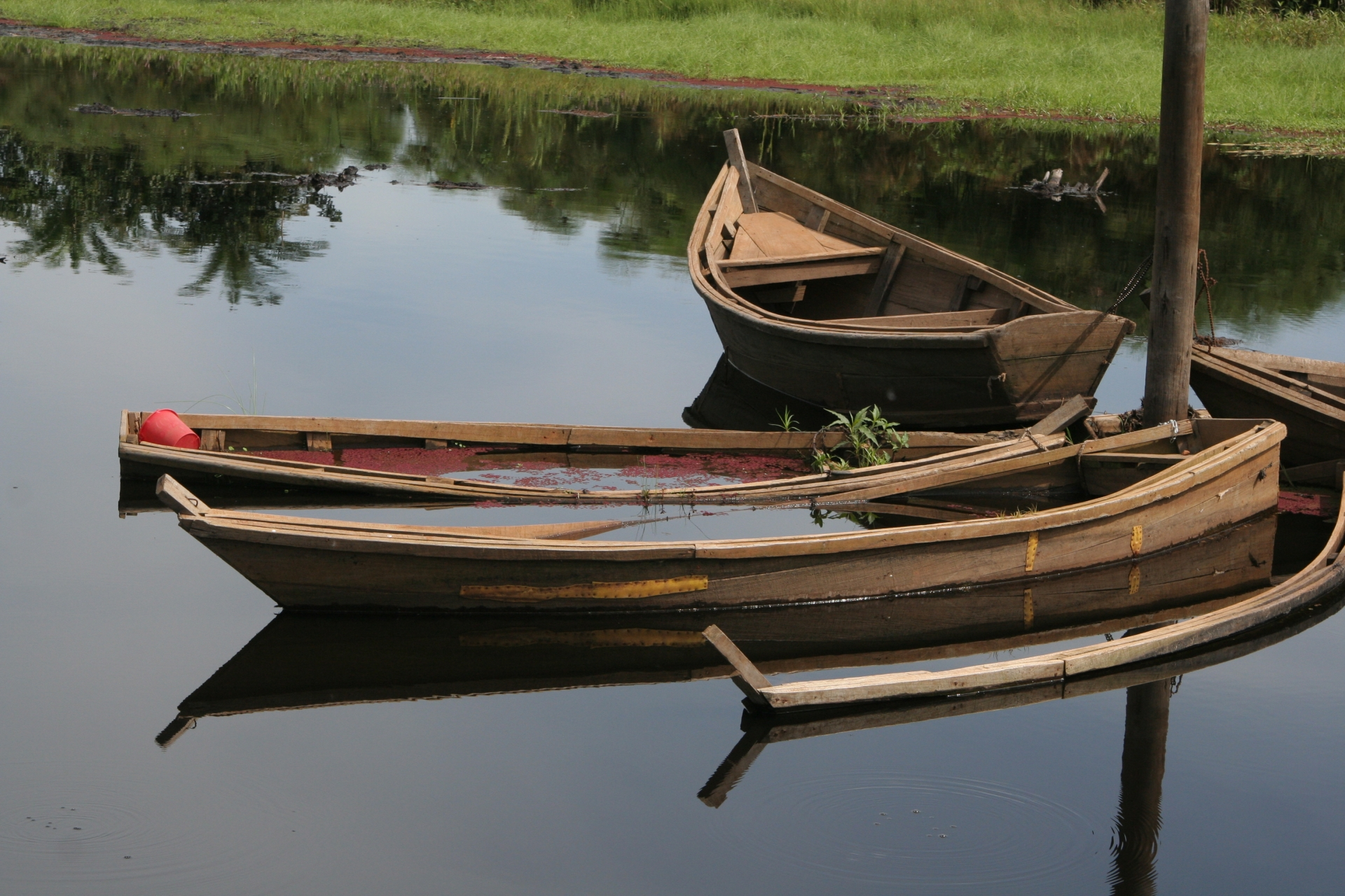 Wooden Boats in pond in Western Uganda